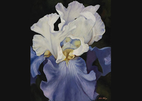 Victor Blakey -- Wedding Dress Iris