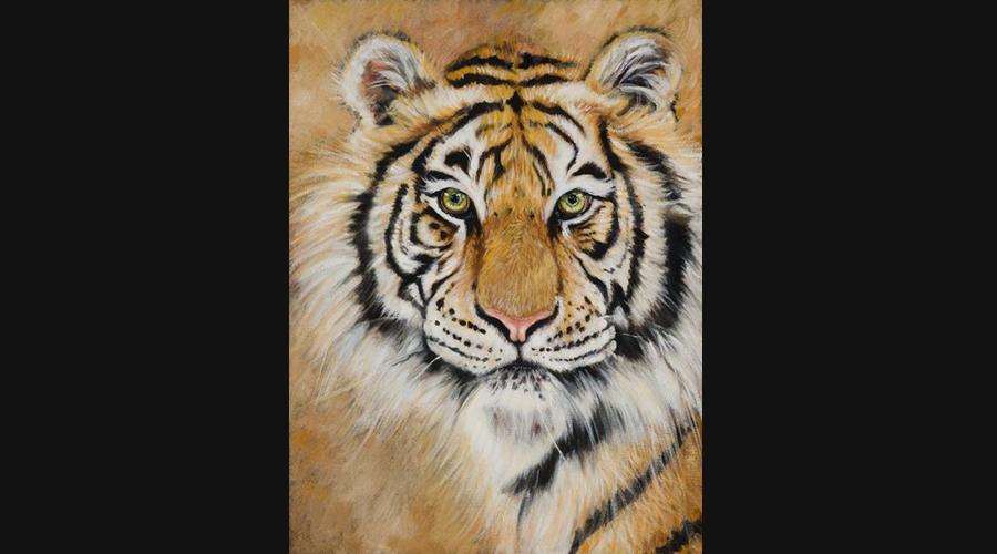 Victor Blakey Siberian Tiger
