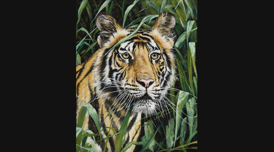 Victor Blakey Tiger In The Grass